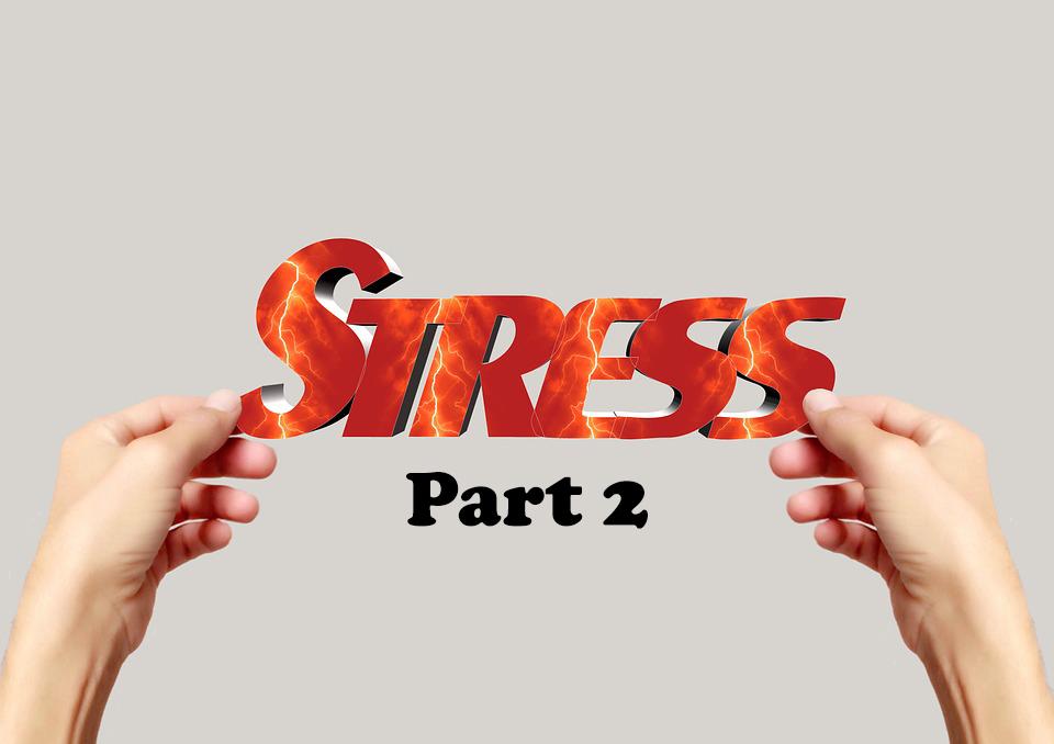 Stress Part 2